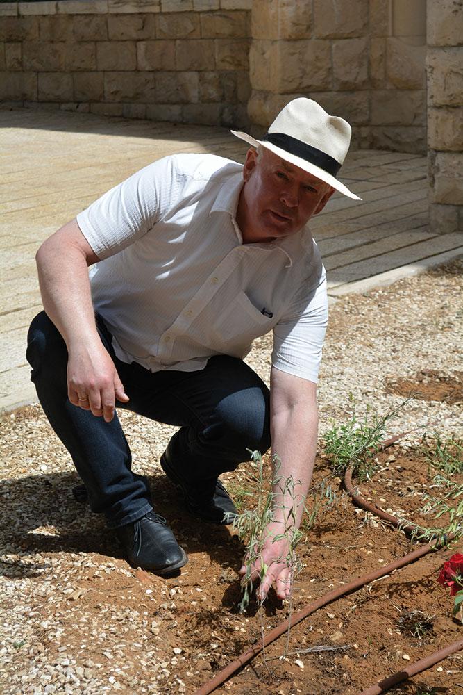 Landschaftsarchitekt Dirk Seelemann beim Pflanzen vor der Himmelfahrtkirche